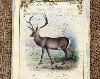 Retro Deer Buck Nature Deer Hunting Gift or Scrapbook Tags or Magnet #354