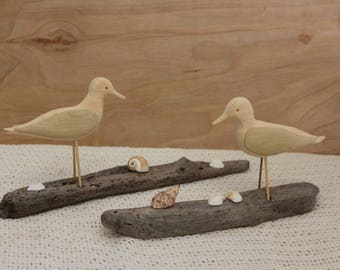 Driftwood Sandpipers