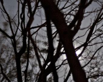 Dreamscape no14. Abstract Moonlight, monochrome wall art, haunting moonscape, surreal night Sky, shadows print, abstract moon print