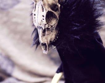 Roe deer art doll Melanhorn  gothic creepy doll forest creature deer with horns