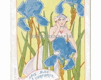 IRIS BLEU - Fabulous French Art Nouveau Artist signed JARNACK Vintage Postcard - Postmarked in Paris in 1904