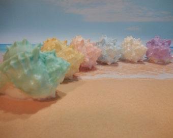 Conch Shell Soap - Shell Soap - Conch Soap - Sea Shell Soap - Seashell Glycerin Soap - Beach Decor - Beach Gift Soap - Coastal Decor