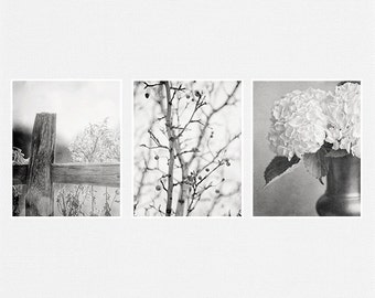 Black and White Prints or Canvas Set, Nature Print, Landscape Print, Shabby Chic Home Decor Prints Set, Hydrangeas, Pears.
