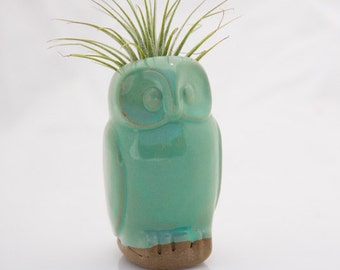 Owl air plant planter ceramic air plant holder in mint