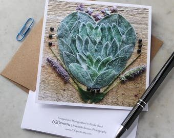 Lambs Ear Heart Mandala ~ One 5x5 Square Note Card (with envelope, blank inside, no message)