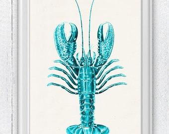 lobster print -Ocean life art Turquoise Lobster n02-Wall decor , Sale buy 4 get 5- Marine sea life illustration print SAS031