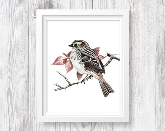 Sparrow Art - PRINTABLE Watercolor Sparrow Art Print, Woodland Bird Painting, Forest Bedroom Decor, Bird On Branch, Instant Download ACC193