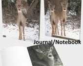 A Family Affair - Journal...
