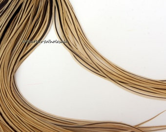 Golden Badger XL Hair Feathers 10 Extra Long Feather Extensions Feathers for Hair Accessories Salon Display 11-13""