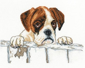 Heritage Crafts - Bailey - Dog Cross Stitch Kit produced from photography of Villager Jim