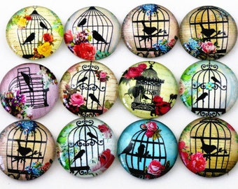10 cabochons 25 mm glass in STOCK colorful bird cage