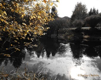 Nature Photography Matted 8x10 Black and White Pond