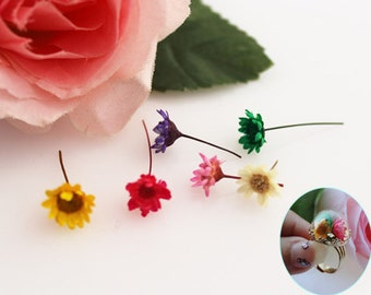 A small pack of dried flowers for Filler of the mini glass bottles MINI Star daisy  preserved fresh flower real dried flowers