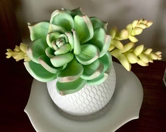 Sugar flowers - Succulent flowers for cake decorations - gum paste flowers