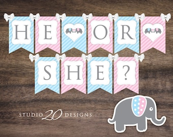 Instant Download Gender Reveal Elephant Baby Shower Banner, Printable Pink Blue Elephant Bunting Banner, He or She Elephant Banner 22J