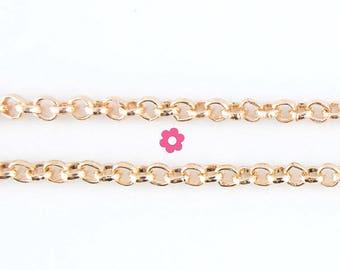 Gold Mesh chain x1m round 2.5 mm (A 03)