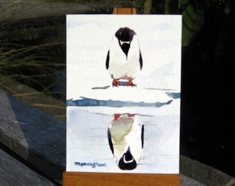 ACEO Limited Edition 5/25 ~ You lookin at me?, Penguin Art print of an ORIGINAL ACEO watercolor painting, Gift for Bird lovers