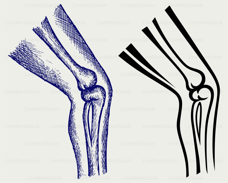 Bein Bein Clipart menschliches Bein Svg Bein Knochen