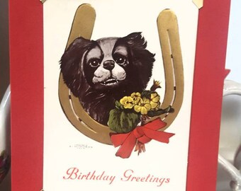 1907 recycled Birthday Postcard of cute toothy grin dog, Japanese Chin? Toy English Spaniel?. Made to mail as a birthday card.