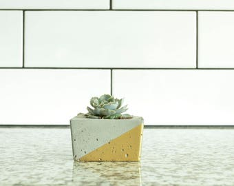Concrete Succulent Planter, Small Square, Concrete and Gold, Modern & Trendy