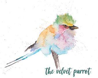 Original watercolour Bird lilac breasted roller A4 animal bird nature art contemporary home wall decor
