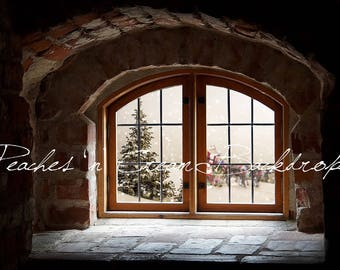 Digital Christmas Backdrop - window look out with Santa