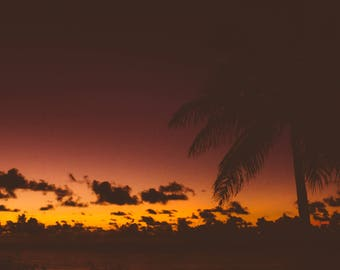 Pink Hawaiian Sunset Silhouette // Hawaii Photography // Mounted Photo Print