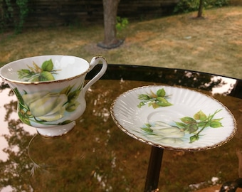 Paragon white  peace rose buds.  Teacup and saucer