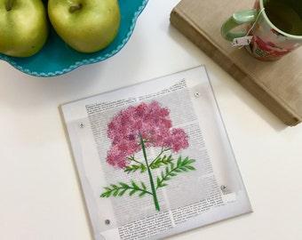 Pink Valerian Flower Plaque
