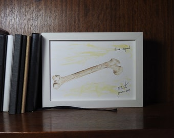 Femur - Watercolor Anatomy