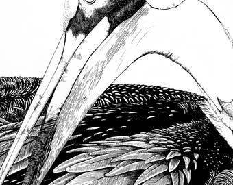 Brown Pelican-pen and ink art print, home decor, fine art, drawing