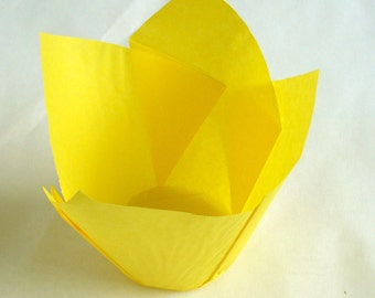Bright Yellow Tulip Muffin Case 50 in pack