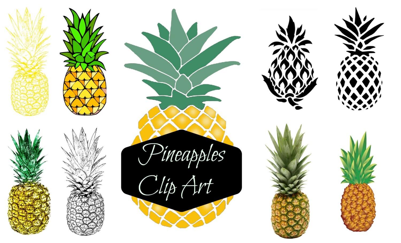 Ananas-Clipart tropischen Sommer Paradies Clipart Ananas