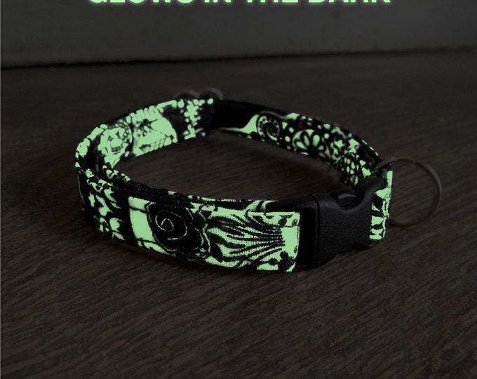 Cat - Calaveras phosphorescent collar