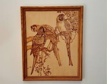 Vintage Framed Pyro graphic 'Three Little Birds' Parrot Bird Wall Art