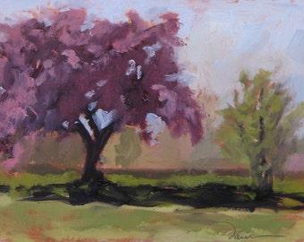 The Last to Bloom - Ashbaugh Park - Santa Fe - New Mexico - Original Oil Landscape Painting