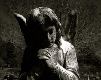 Elmwood Dark Prayer