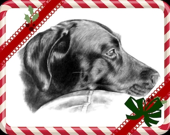 Custom Pet Portrait Sketch Special Size & Pricing Option on Hand Drawn Sketch of Your Pet