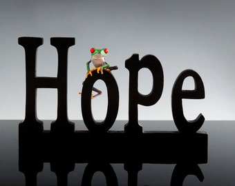 HOPE, Photo of wooden letters with frog