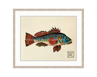 "Sea Bass 11""x14"" Giclee Print Of A Watercolor Painting for the Salt Water Angler."