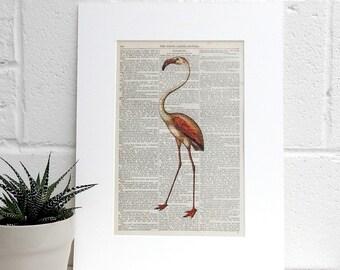 Antique Book Page Art Print, Flamingo Art Print, Wildlife Decor Pretty Flamingo, Genuine Victorian Book Page, Literary Gift, Bird Lover Gift