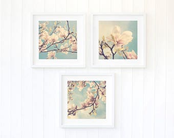 Botanical prints Magnolia floral bedroom wall art prints Spring pastel apartment decor Fine art photography Summery home decor, set of three