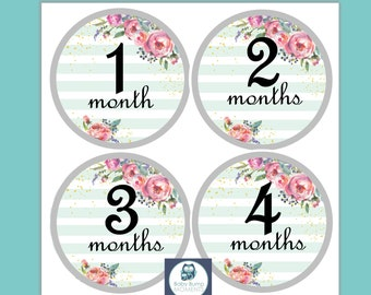 First Year Belly Stickers, Baby Shower Gift, Monthly Baby Stickers, Monthly Milestone Stickers, Watercolor, Mint Floral