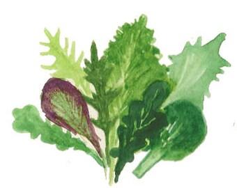 Mustard Greens Certified Organic Salad Mix