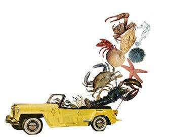 Trip to the cape.   Limited edition print of an original collage by Vivienne Strauss.