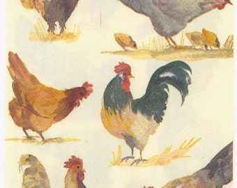 Decoupage Napkins | Farm Yard Poultry  | Chickens Rooster Hens | Chicken Napkins | Bird Napkins | Paper Napkins for Decoupage