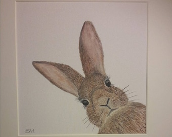 Hare today, gone tomorrow, Original  Mounted Watercolour painting on Canvas