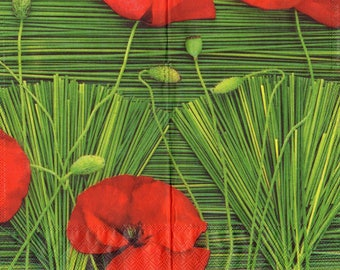 VERY beautiful poppies 1 lunch size paper towel 177
