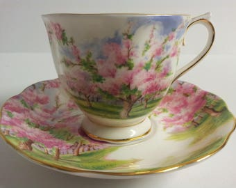 Royal Albert Bone China England Blossom Time Tea Cup and Saucer