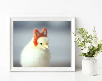 Tiny Chick Wearing Tiny Fox Ears Photograph Baby Animal Print Birds in Hats 8x10 (1)